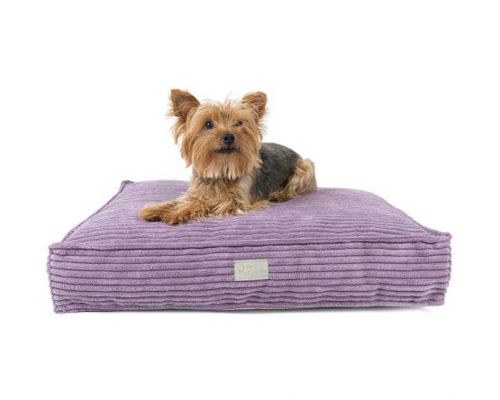 Hundekissen Eckig Violett Cord